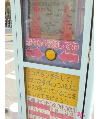 sakura bus