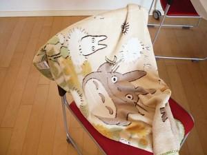 totoro blanket