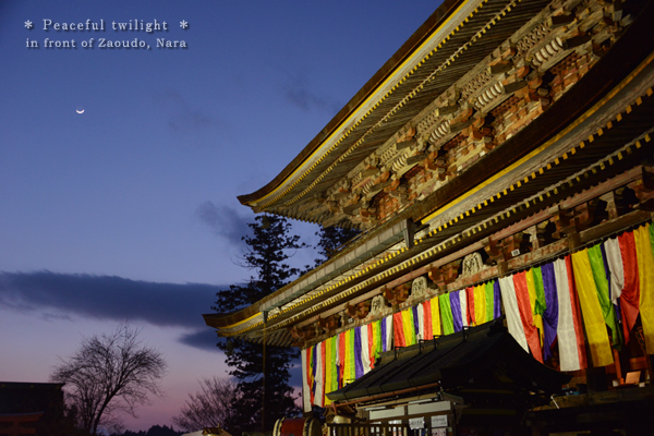 20140205_photoblog_peaceful twilight of zaodo hall