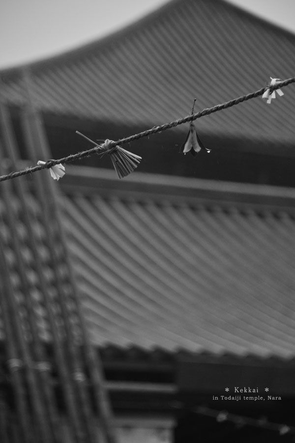 20140307_photoblog_spiritual barrier made by rope