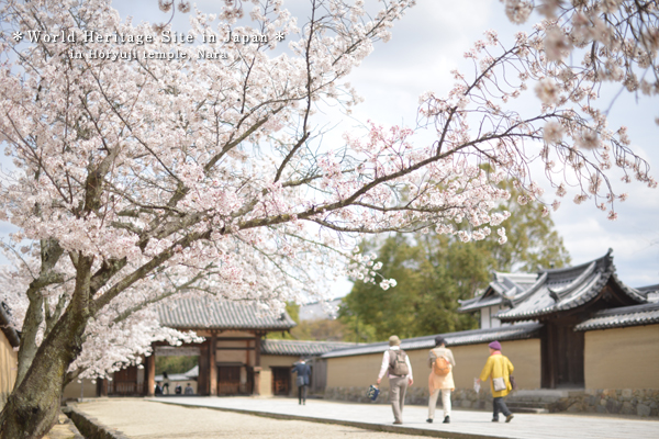 20140411_photoblog_world heritage of japan