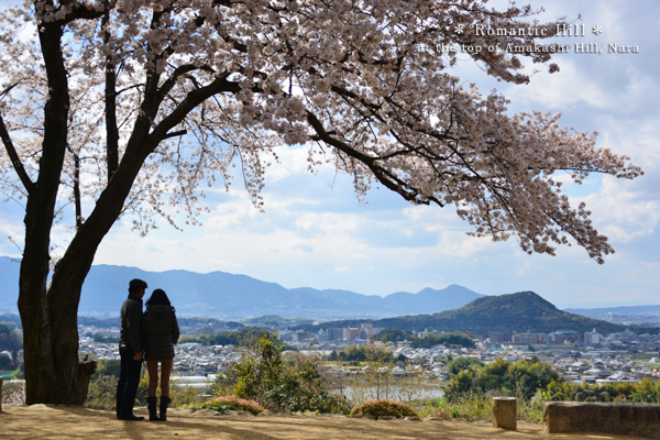 20140427_photoblog_amakashi hill in a direction opposite to mt unebi