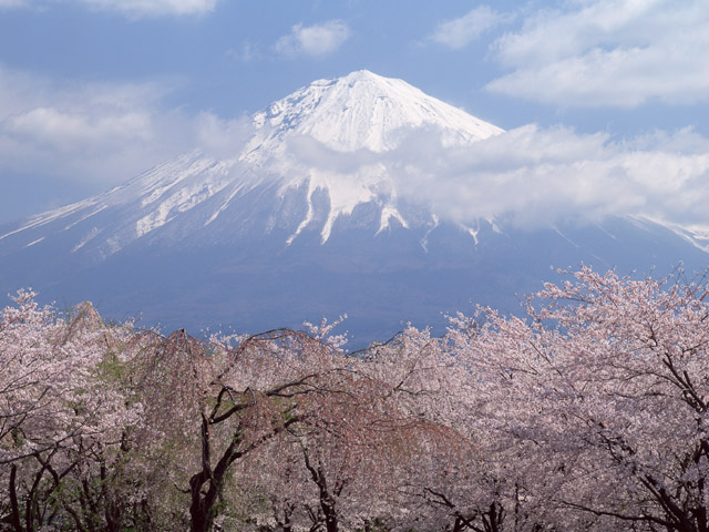 japanese fuji mountain
