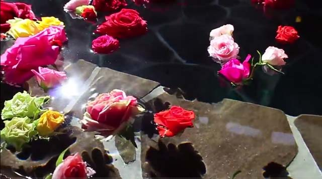 rose bath
