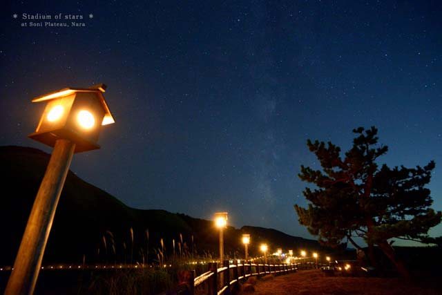 20141106_stars