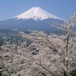 Mt.Fuji01