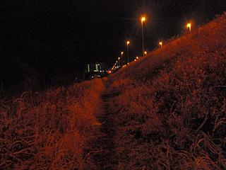 Midnight Full-Marathon