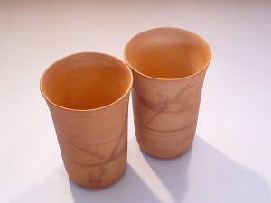 hagi_cup01