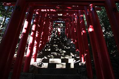 Japanese torii
