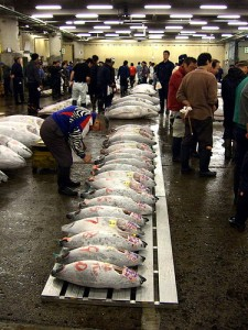 "Tuna Fish Sold in Tsukiji. ""水泳男"" some rights reserved. flickr"