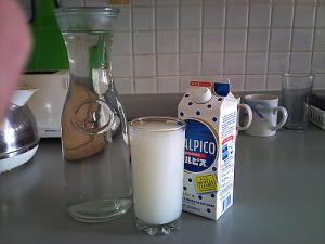 How to Make Homemade Calpis/Calpico