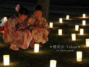 [Photoblog] Toukae Candle Lights