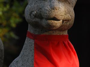 [Photoblog] Smiling Shrine Fox