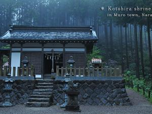 [Photoblog] Kotohira Shrine in Nara
