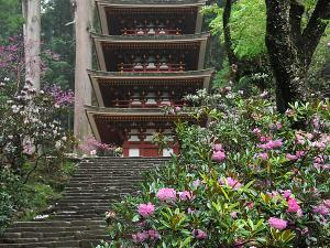 [Photoblog] Murouji Temple in Spring