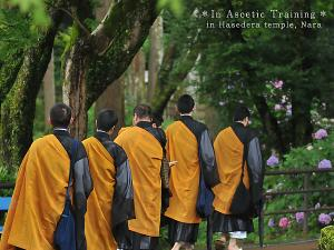 [Photoblog] Monks in Training