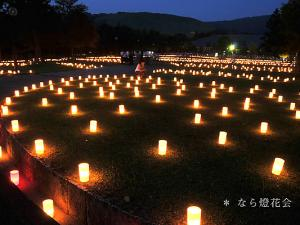 [Photoblog] Illumination of Nara Tokae Festival 