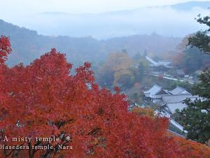 [Photoblog] Hase-dera Temple in a Mist