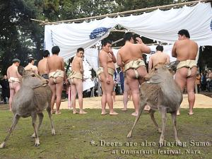 [Photoblog] Child Sumo Wrestlers and Deer