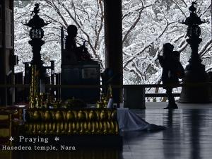 [Photoblog] Praying Girl at Hase-dera Temple