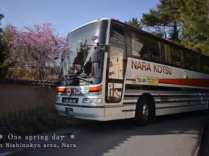[Photoblog] Early Spring Coach Tour at Nishi-no-kyo