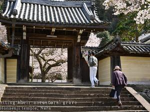 [Photoblog] Entrance of Honzen-ji Temple