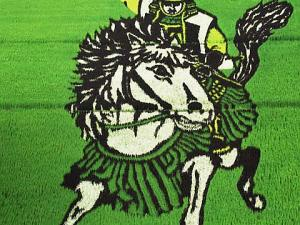 Paddy Field Art -Tanbo Art in Japan