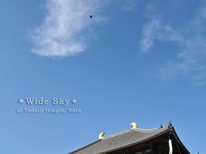 [Photoblog] Wide Sky