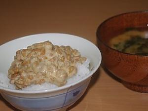 NATTO --- Japanese Traditional Fermented Soybeans