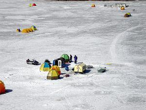 Ice Hole Fishing Wakasagi --- Japanese Smelt
