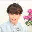 """""""Tetsuko no Heya"""" Marks a New Guinness World Record"""