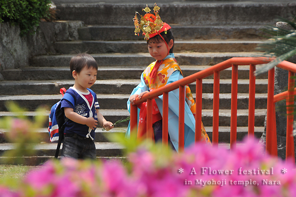 Japan Flower Festival Kannon Flower Festival